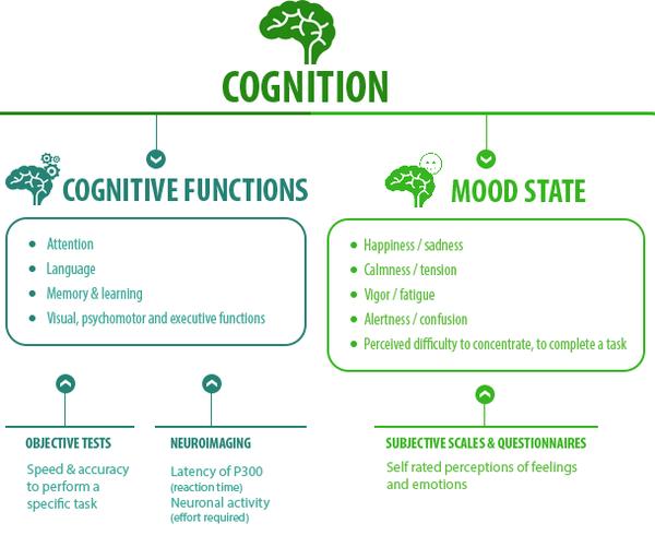 _2019-04-30 Cognition.png